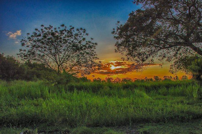 Surinam-America-Paramaribo-colonial-Holanda_1642045801_33646893_1500x998